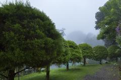 resort-plantation