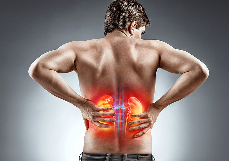 Ayurvedic Management And Treatment For Kidney Diseases Livekerala