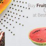 best fruit seeds online kerala