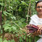 Top-20-Agriculture-krishi-videos
